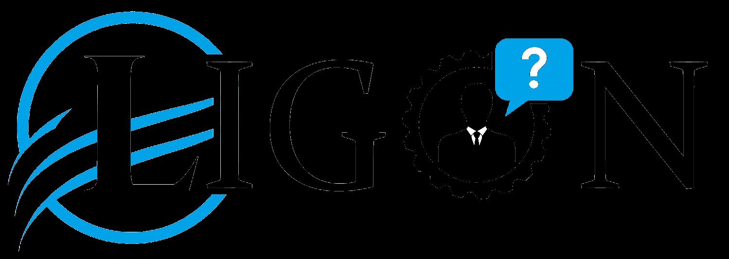 Ligon Business Consulting - We Build Businesses