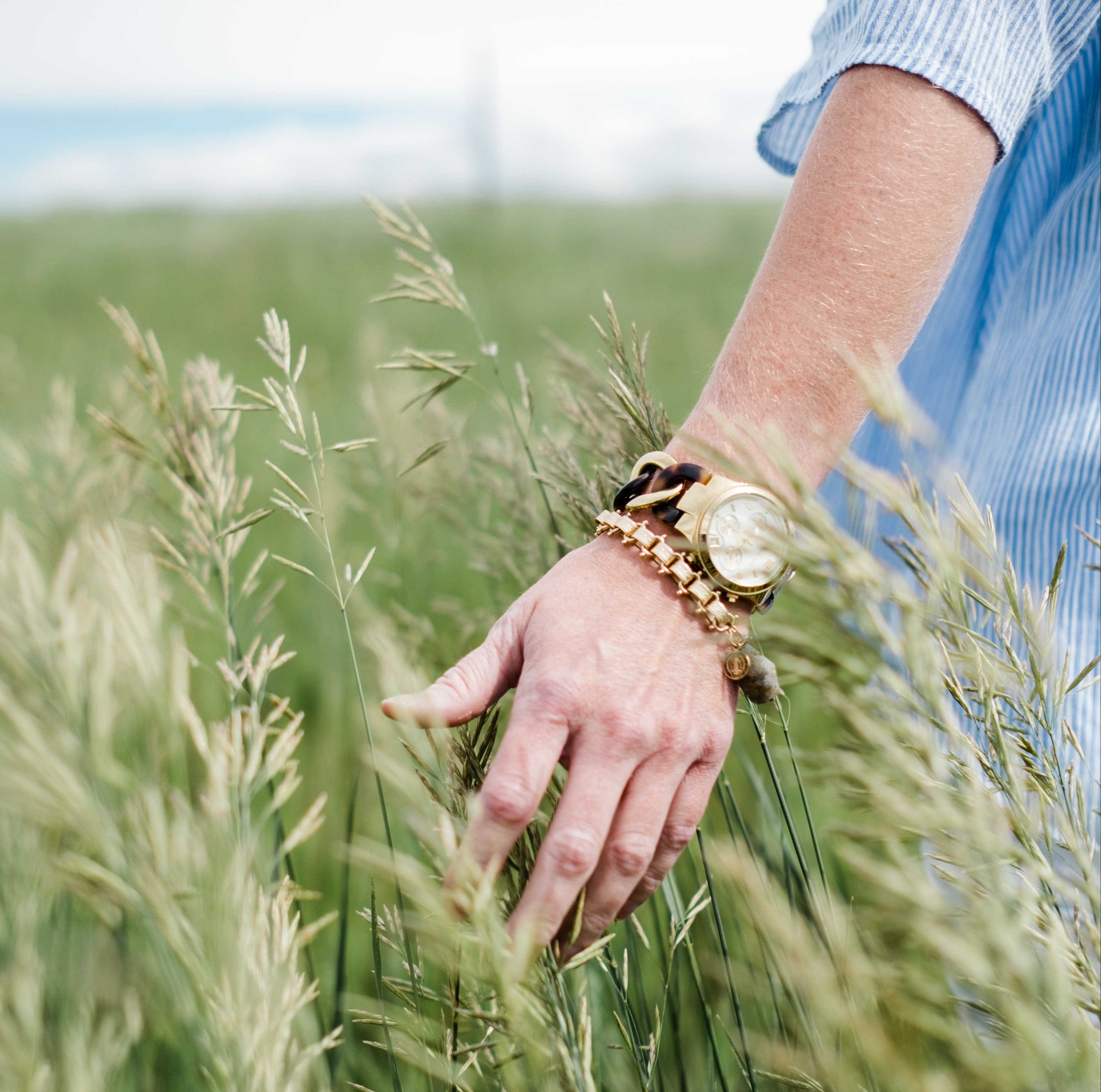 person brushes hand along tall grass
