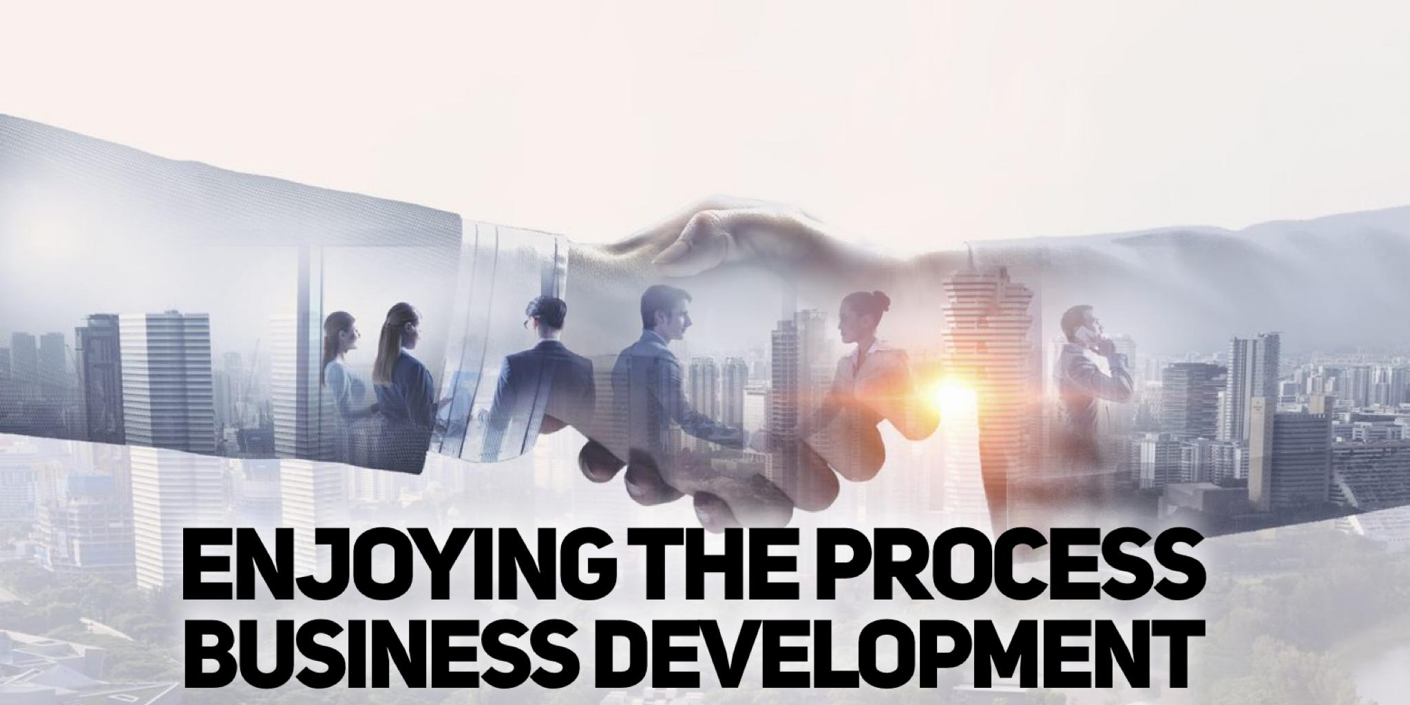 Enjoying The Process Business Development