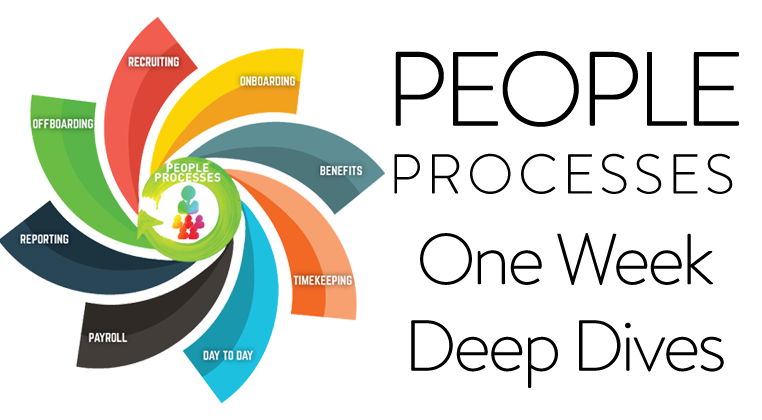 Understanding Individual People Processes