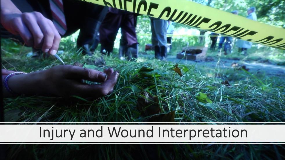 Injury and Wound Interpretation