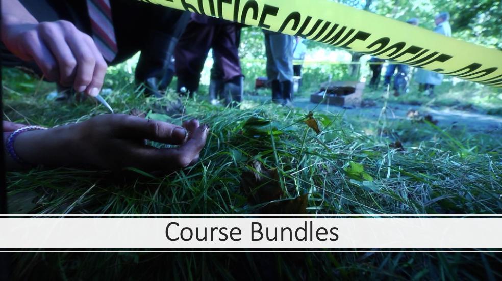 Course Bundles