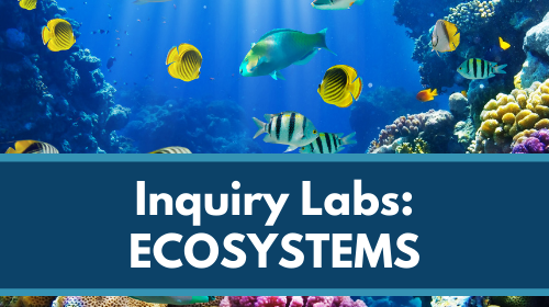 Inquiry Labs Bundle: Ecosystems