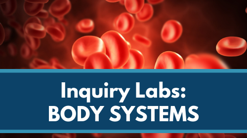 Inquiry Labs Bundle: Body Systems
