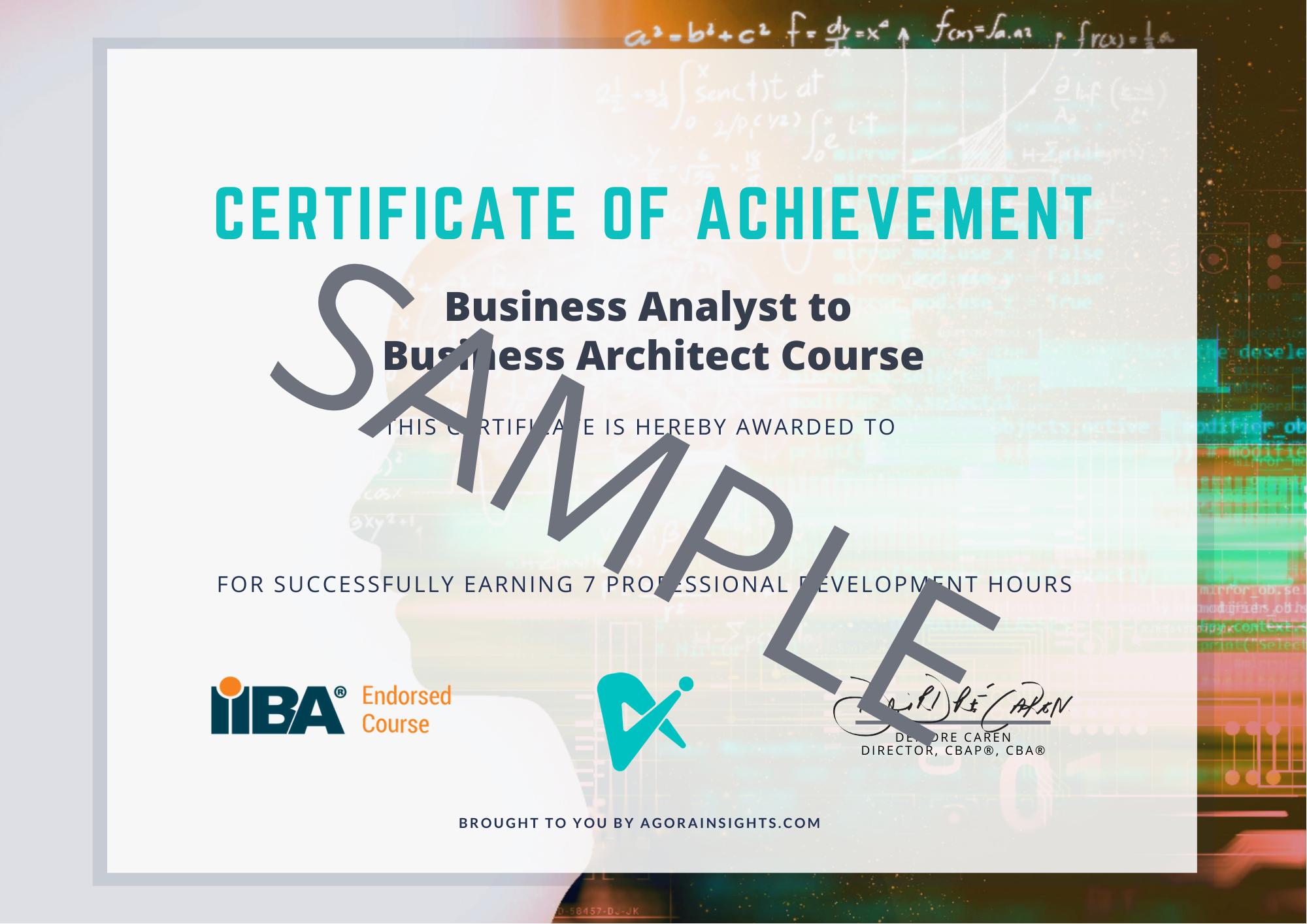business architecture course