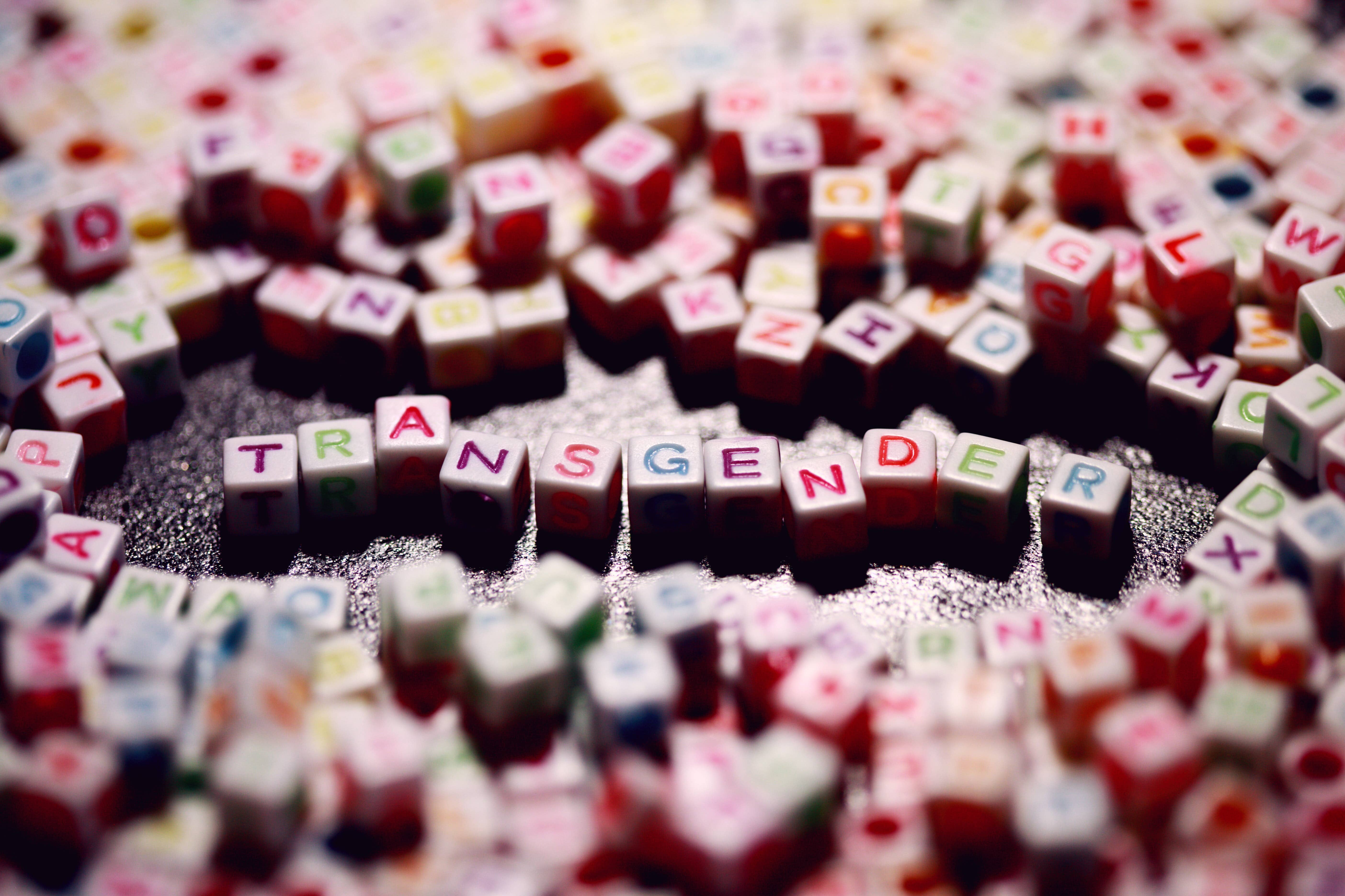 coloured plastic toy blocks spelling out the word 'transgender'