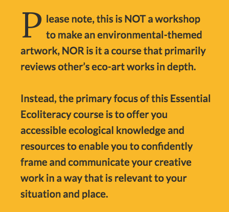 Please note, this is not a workshop to make an environmental-themed artwork, nor is it a course that primarily reviews other's eco-art works in depth...