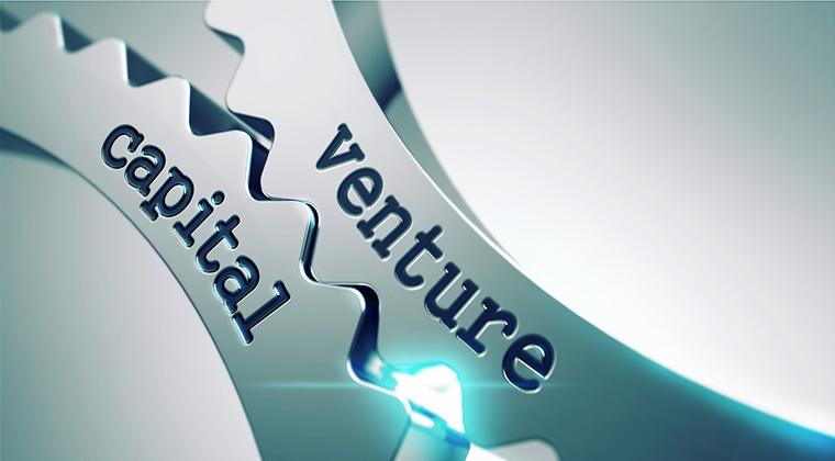 Venture capital - individual