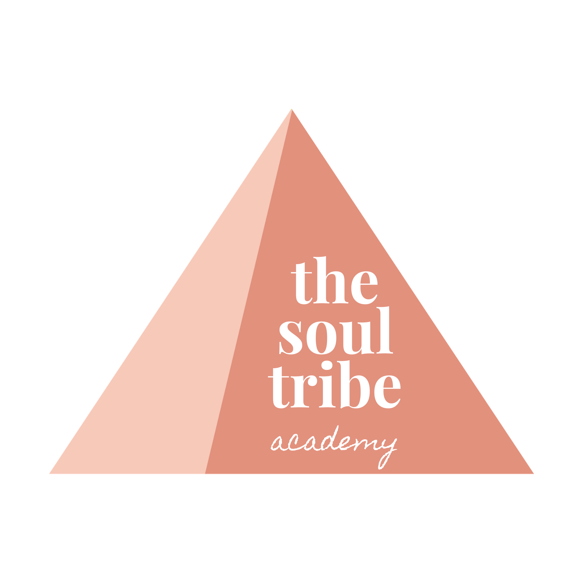 The Soul Tribe Academy