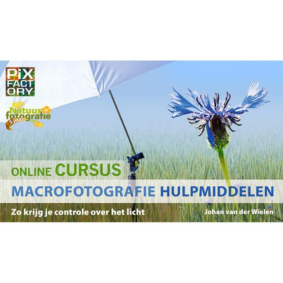 Online cursus macrofotografie hulpmiddelen banner