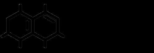 InDiPaed - Institut für Digitale Pädagogik (nicht staatlich) Logo
