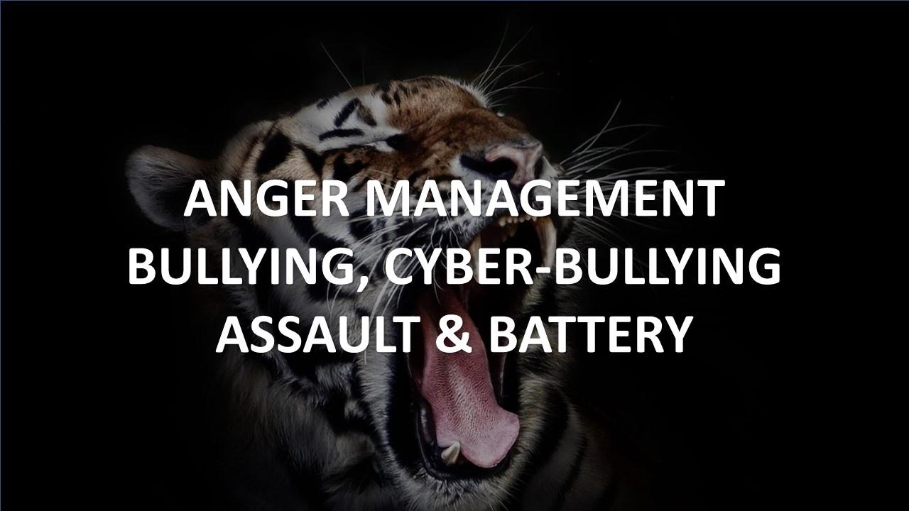 Anger Management, Bullying
