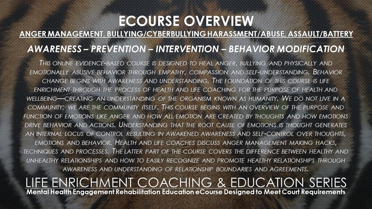 NCOei Anger Management, Harassment/Abuse Intervention Integrity Education Series