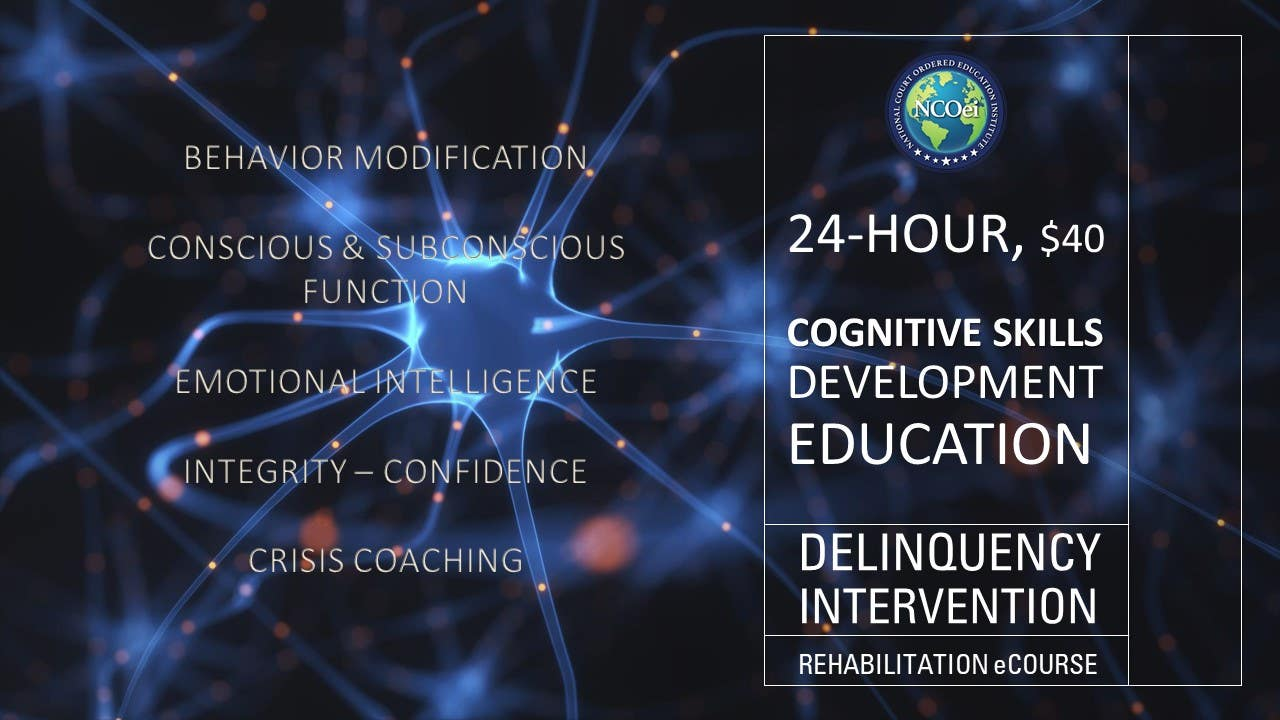 NCOei.Thinkific.com online court ordered rehabilitation education courses for use in court or probation