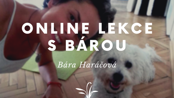 3 I Online lekce s Bárou