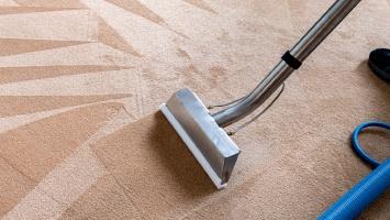 Carpet/Upholstery