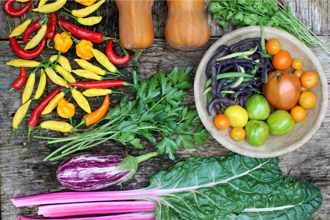 garden harvest of vegetables on table