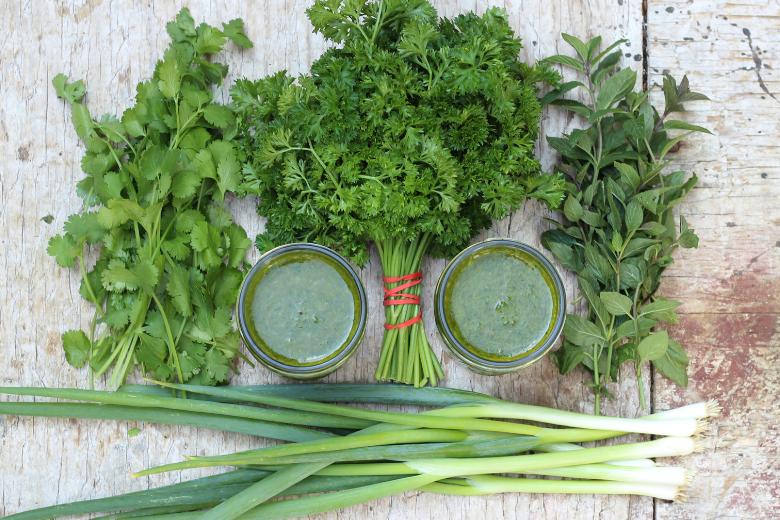 herb garden basil harvest