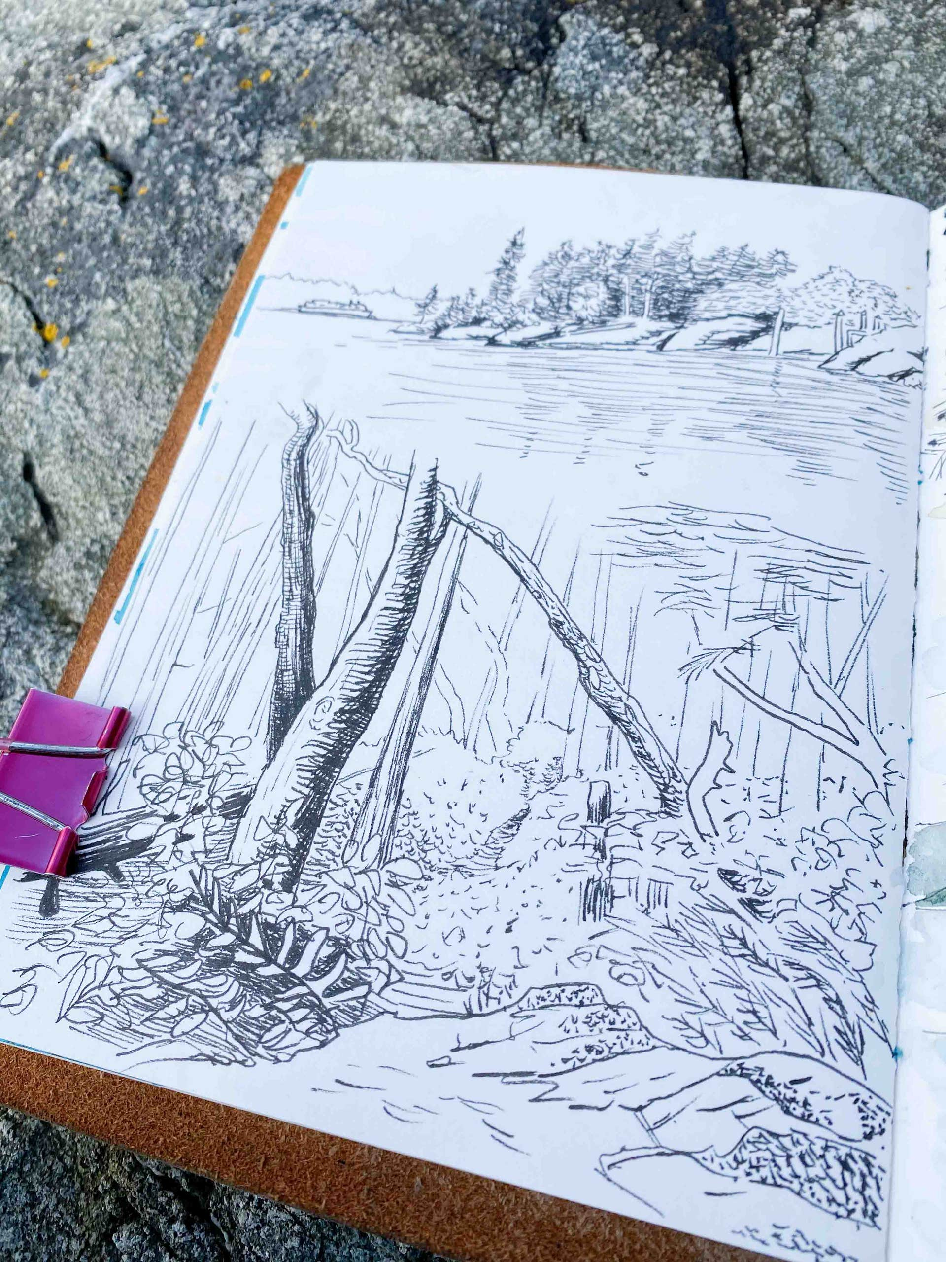 Nature sketch of a forest in pen