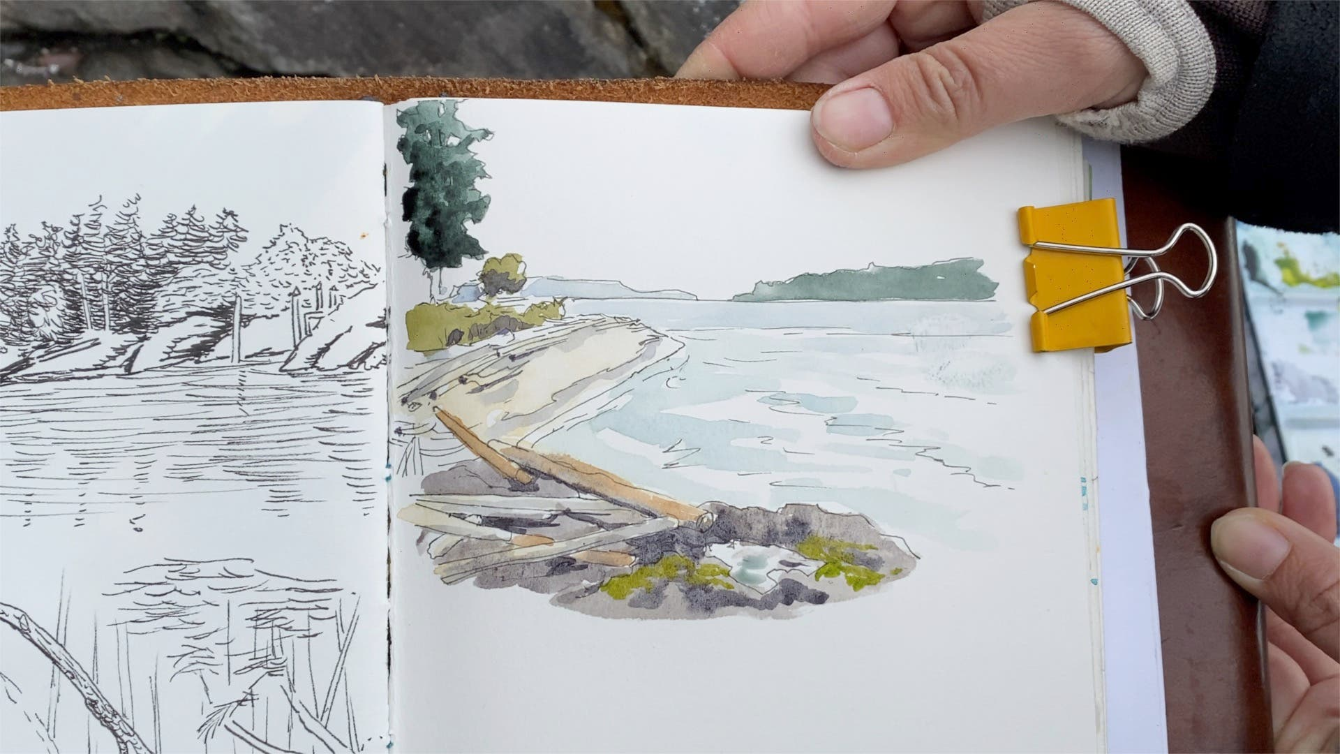 Sketch of beach with driftwood