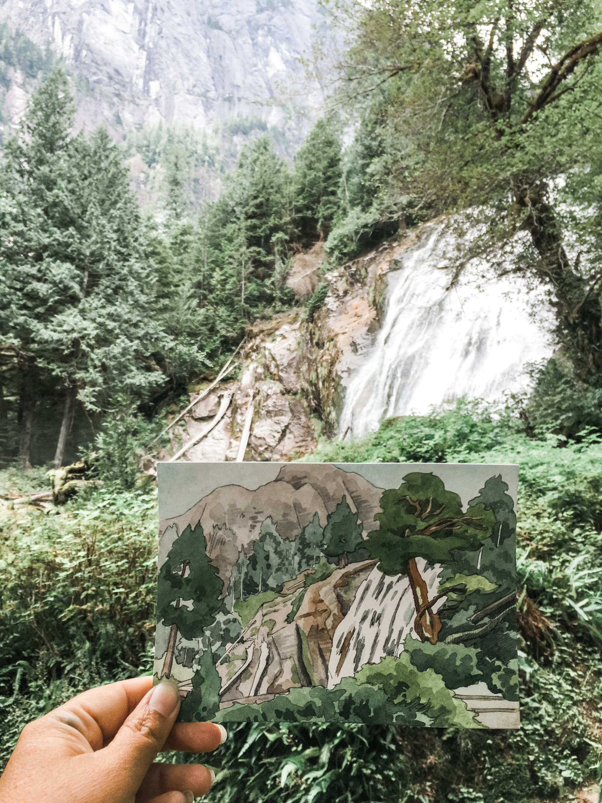 Nature sketch with trees and waterfall