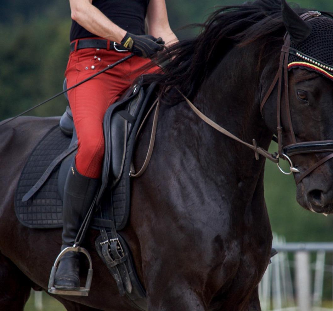 Somatics for Riders - Posture Transformation Program with Alissa Mayer