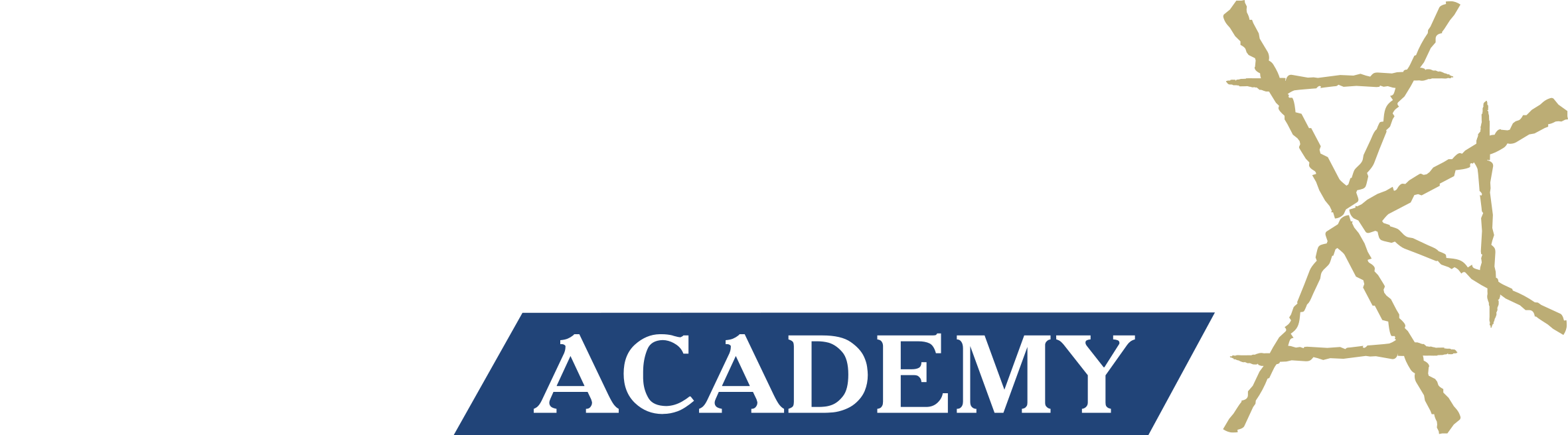CAMNES Academy logo