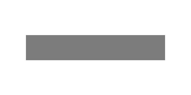 Digital Natives logo