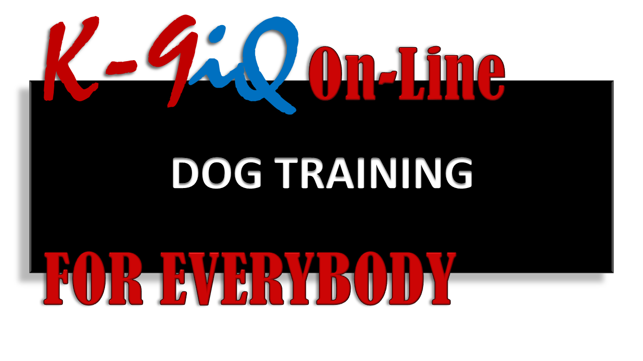 DOG TRAINING - FOR EVERYBODY