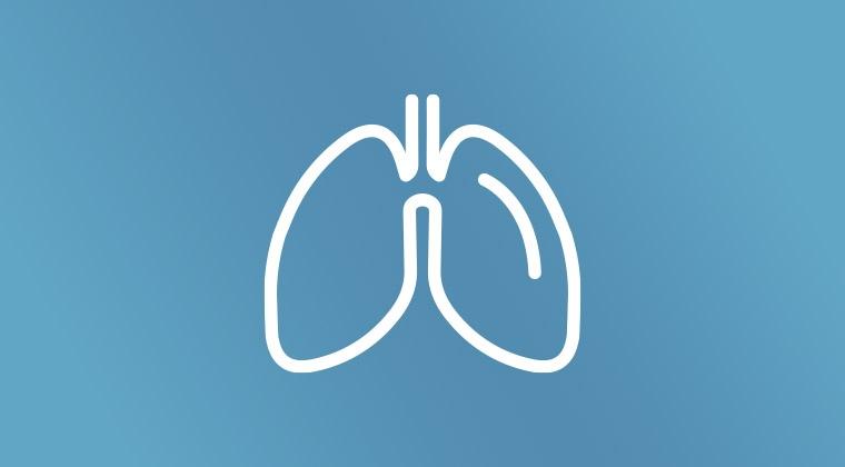 Airway/Respiration/Ventilation
