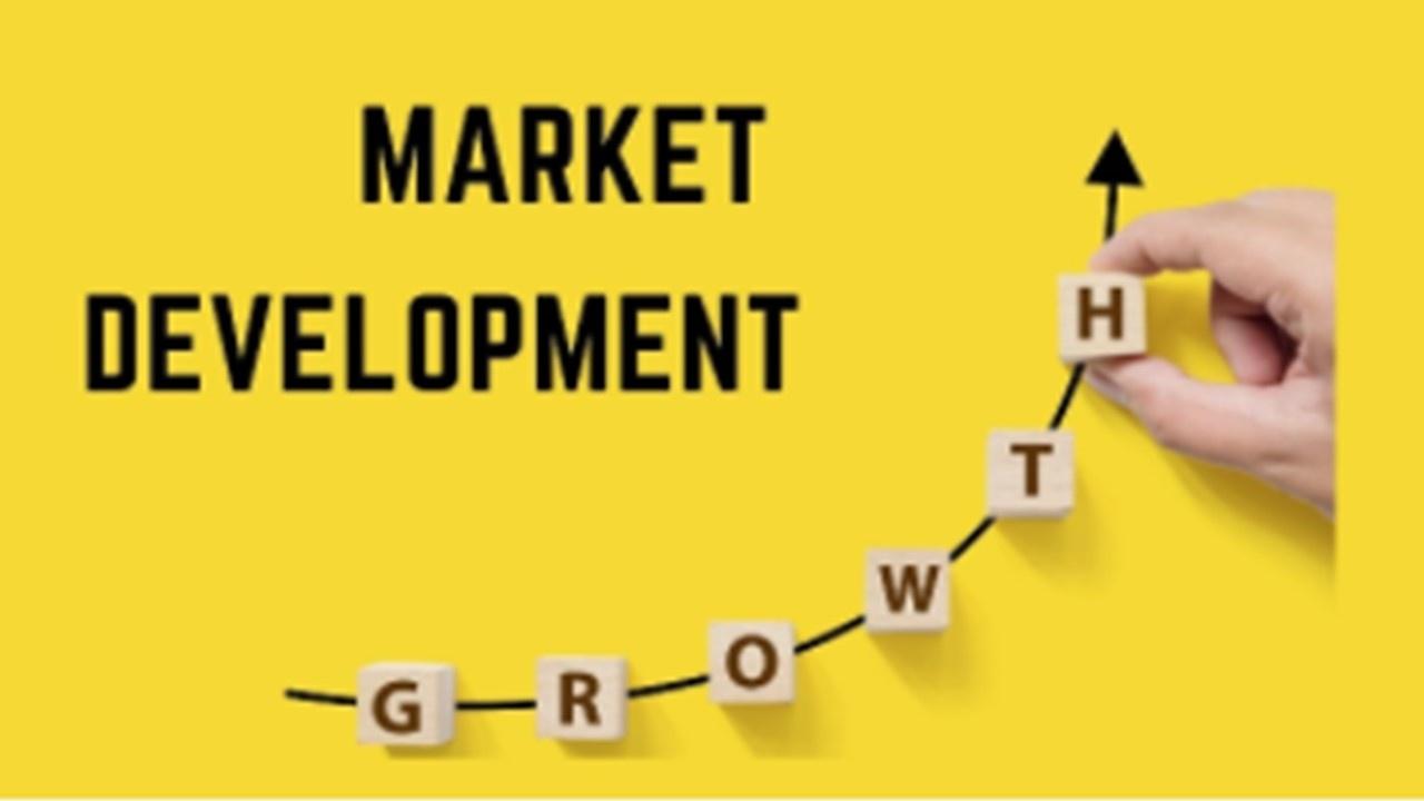 Market Development Implementation Lab