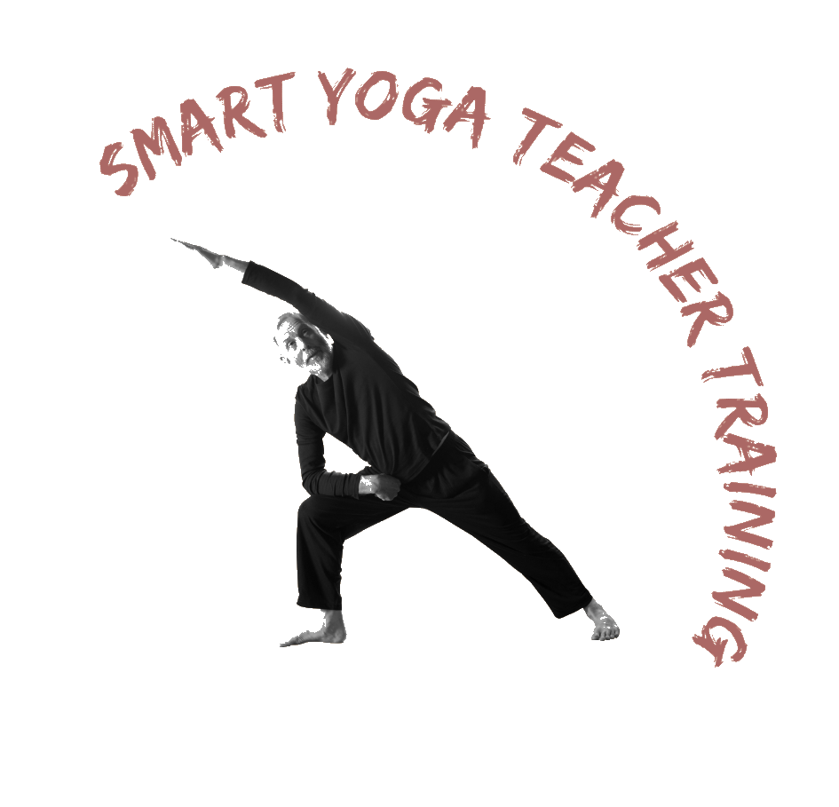 Smart Yoga Teacher Training logo