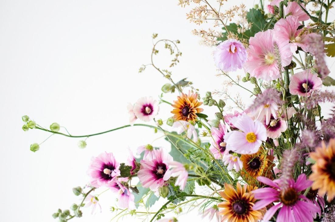 Flower arrangement with hollyhocks Photo Aesme Studio