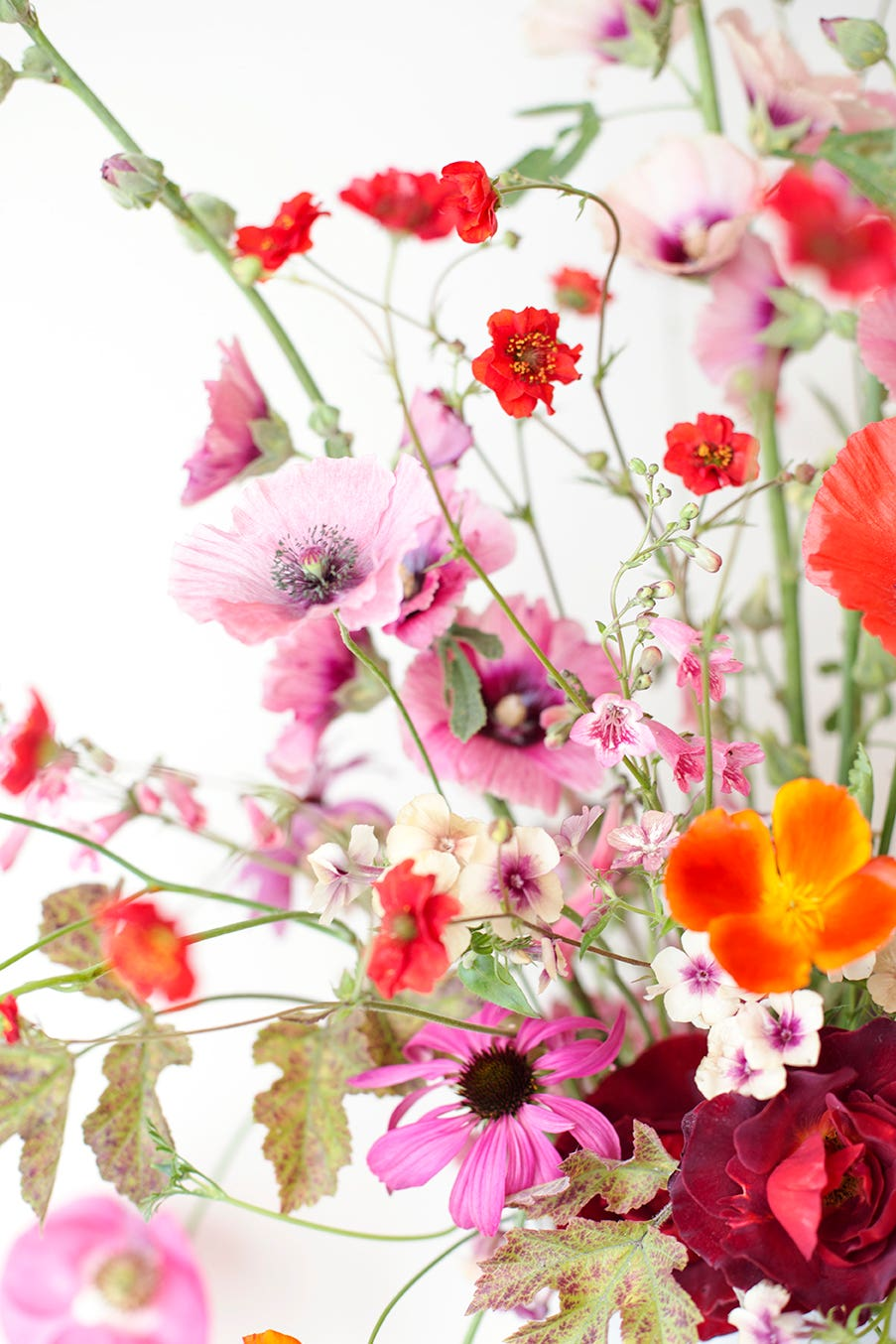 Pink and red flower arrangement Photo Aesme Studio