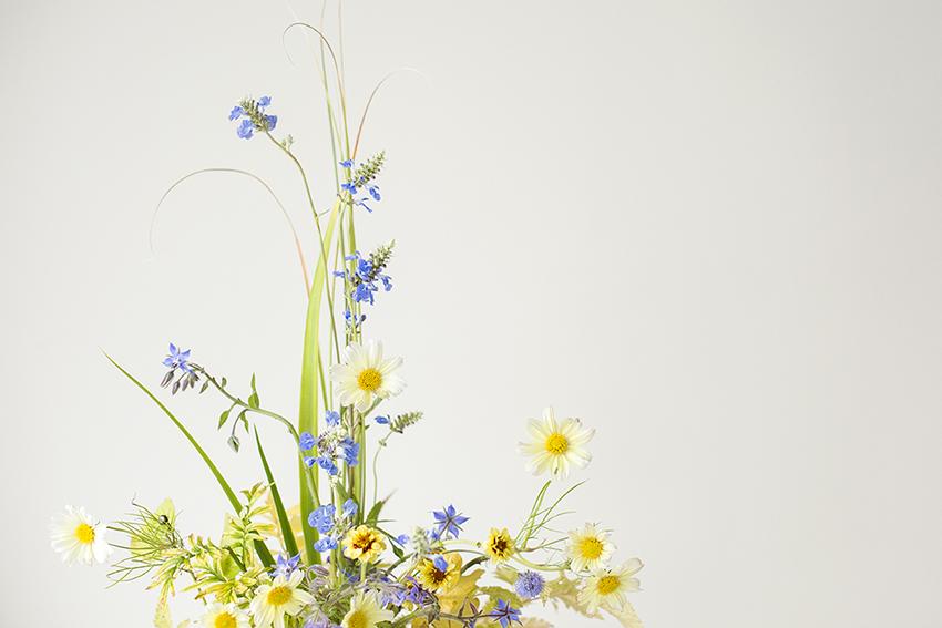 Blue and yellow flower arrangement Photo Aesme Studio