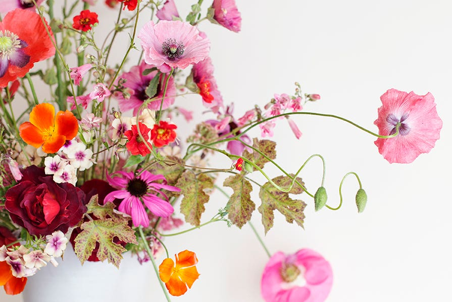 Flower arrangement with poppies Photo Aesme Studio