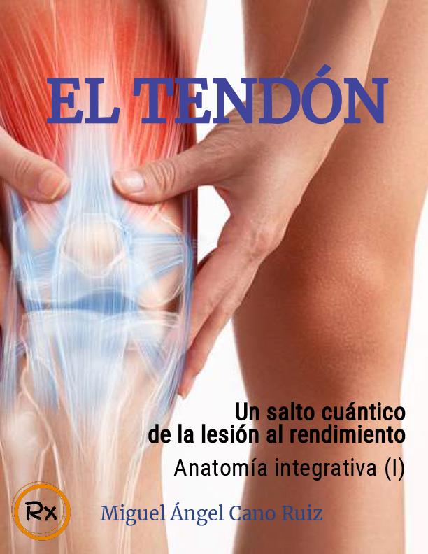 Anatomía integrativa I_ el tendón