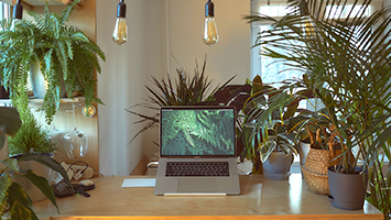 Living & Work Spaces