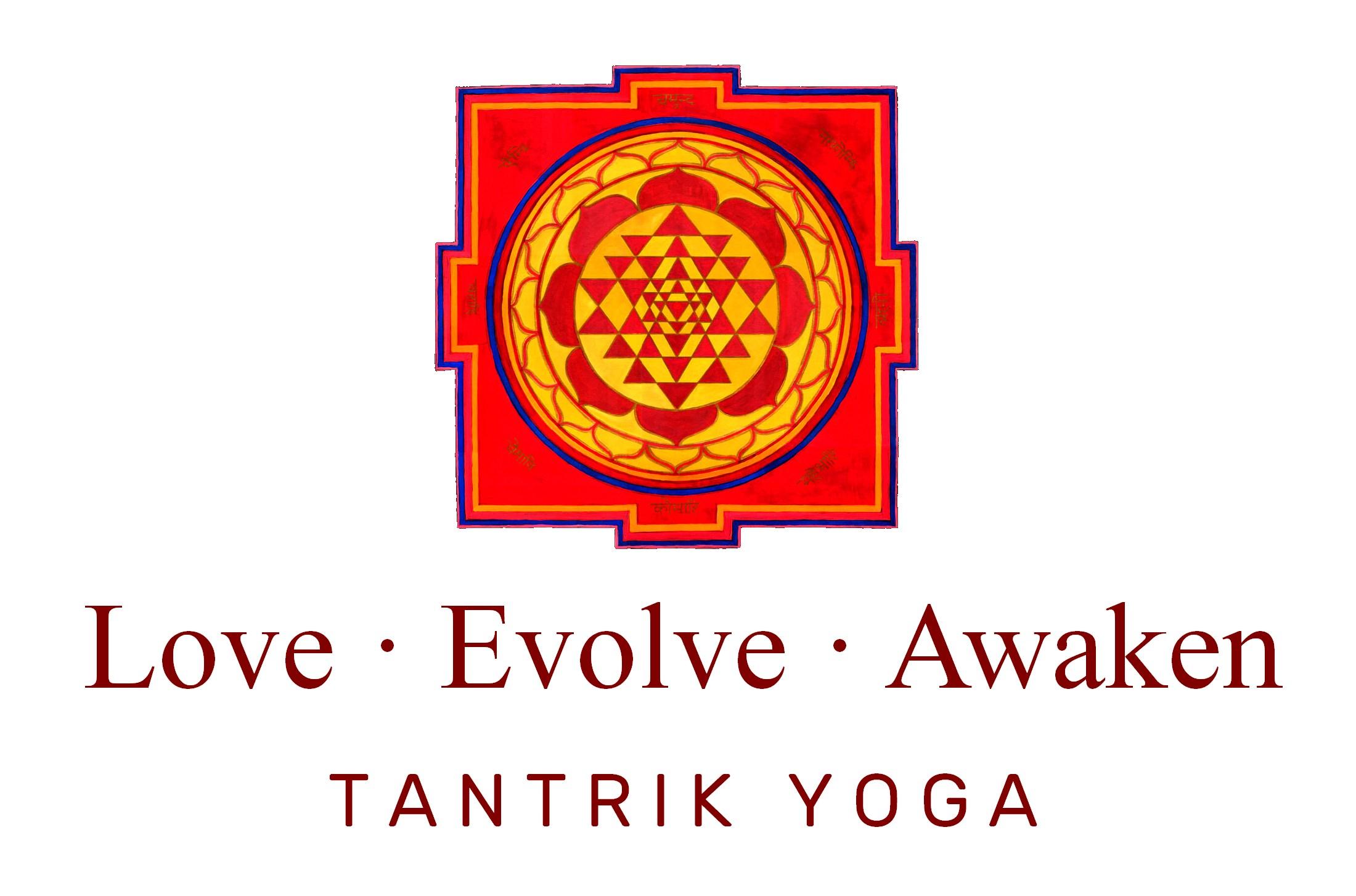Love Evolve Awaken logo