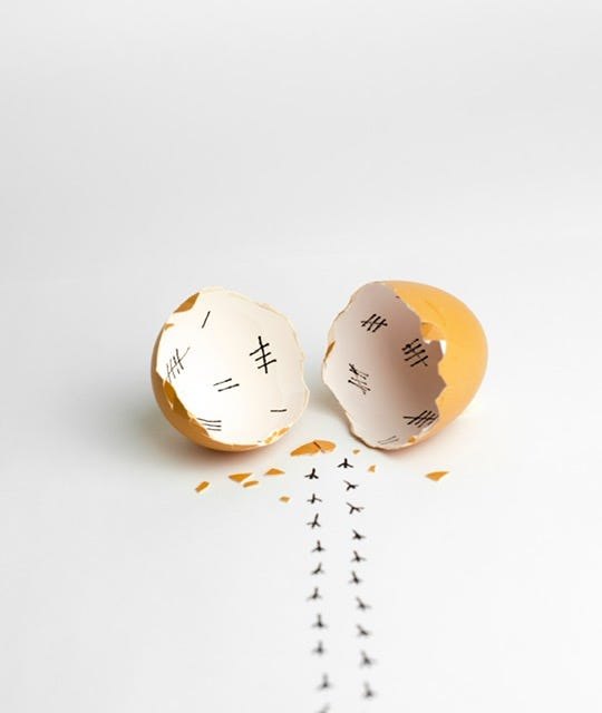 Eggs image by David Jericó.