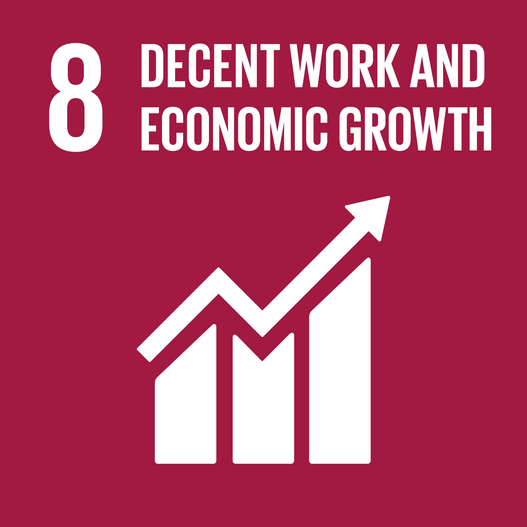 United Nations Sustainable Development Goal 8