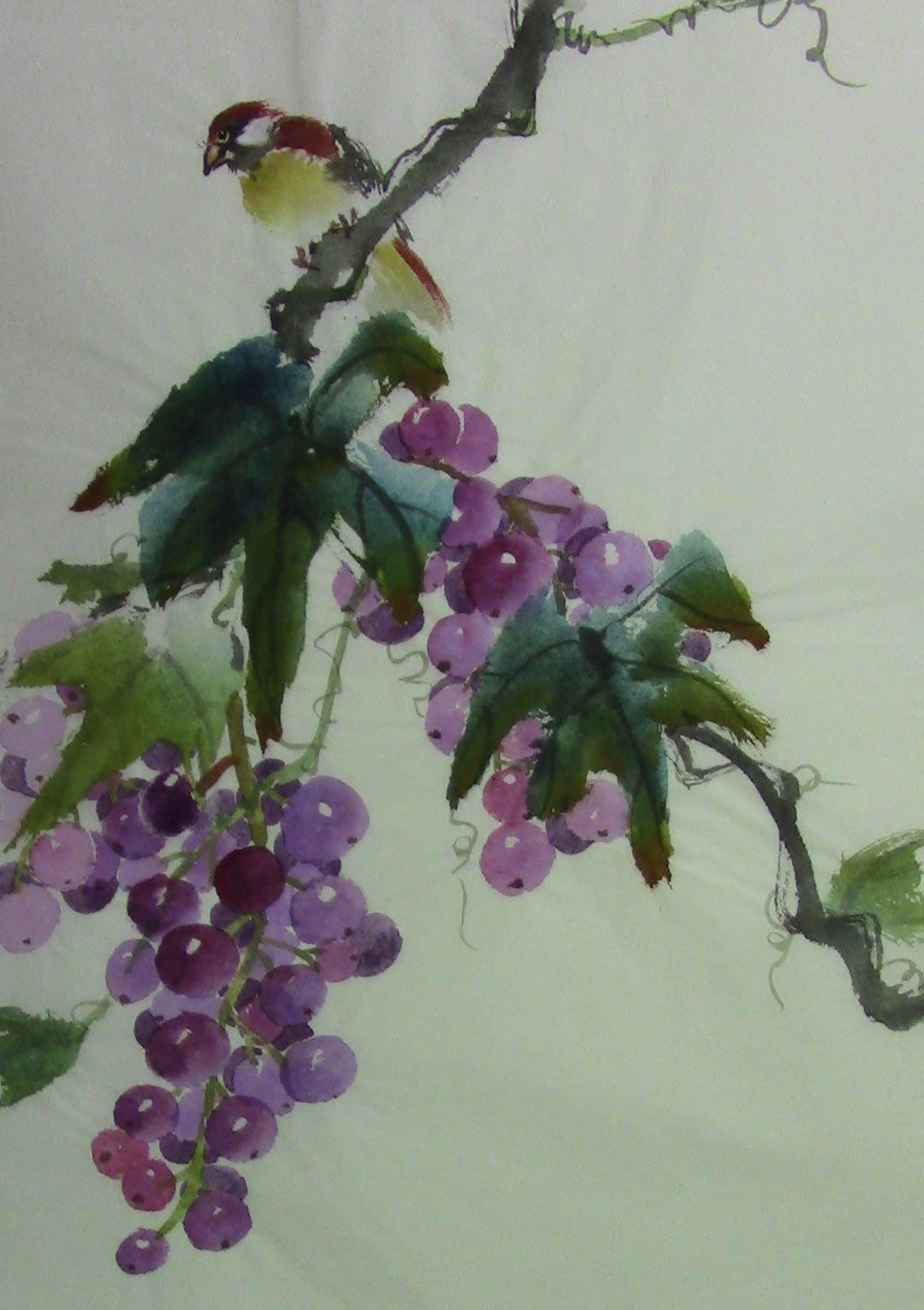 Grape bird