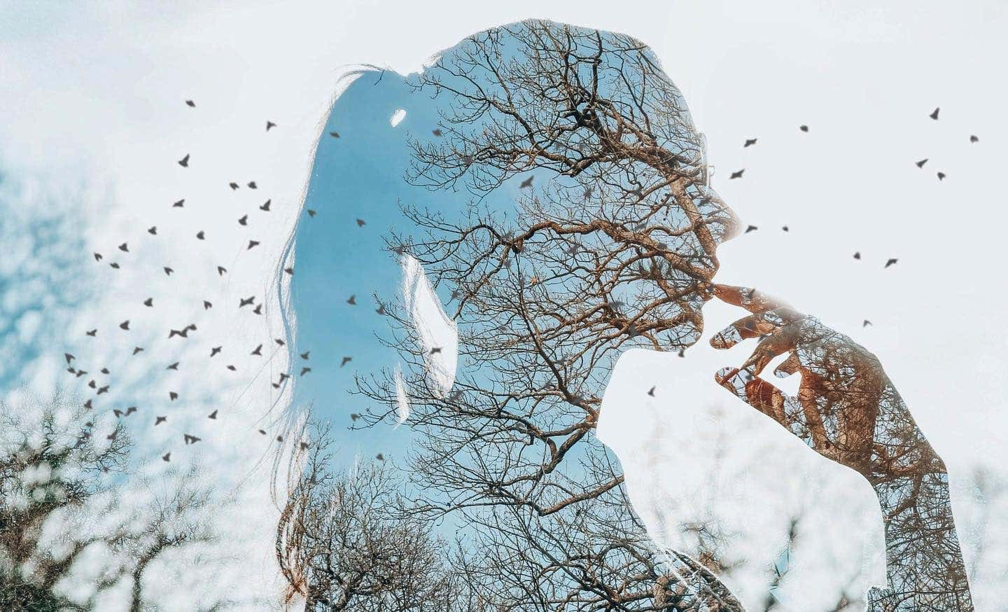 profile of a woman with a window reflection onto the natural world