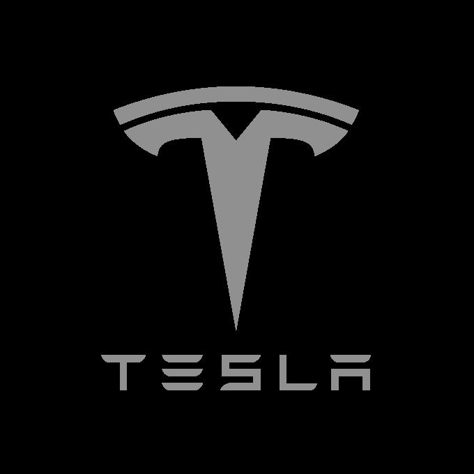Tesla uses RealPars platform
