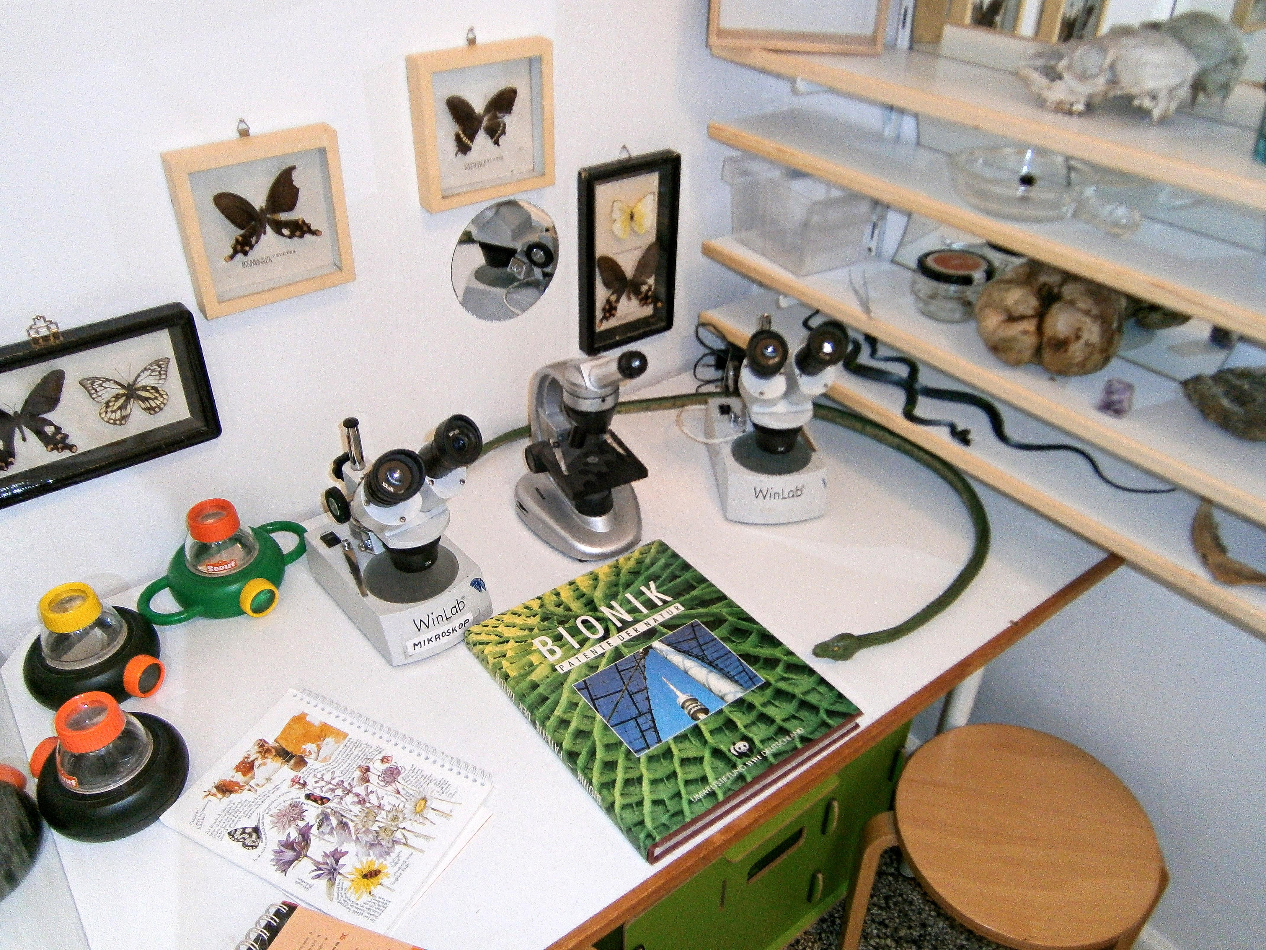 Kleine Forscher Kindergarten