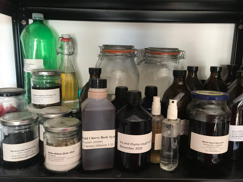 Herbal preparations you can make