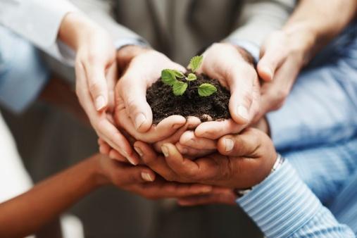 Appreciative Leadership for Montessori Leaders