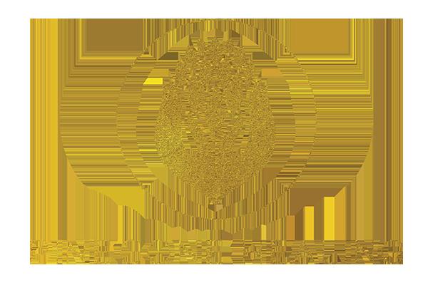 pinecone healing logo