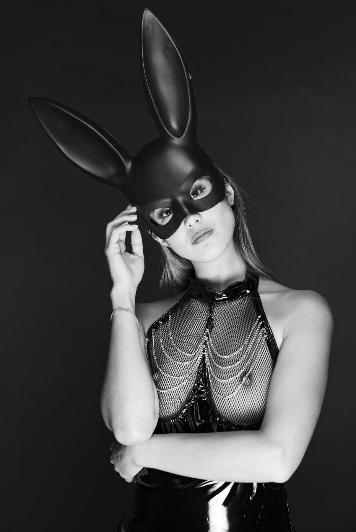 Studio Bunny