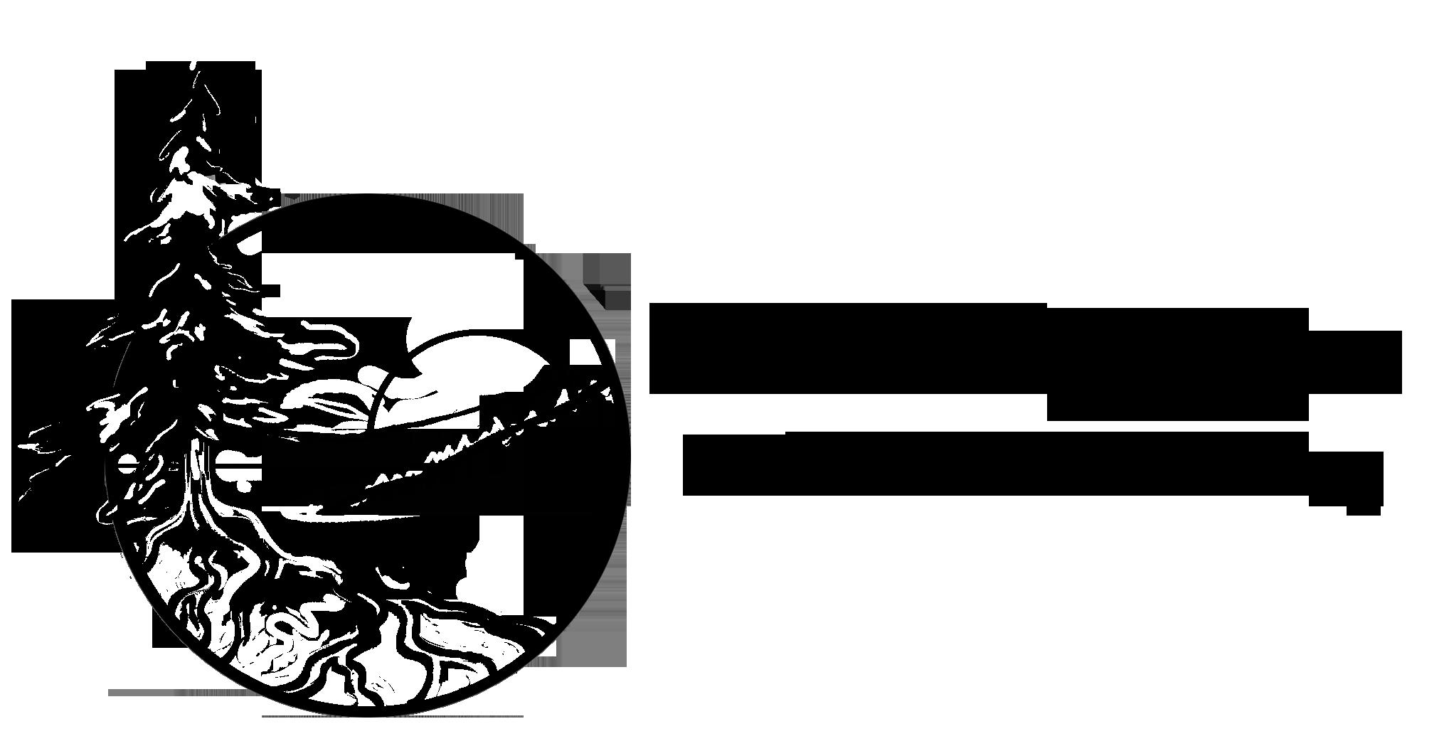 Logo for Listening Tree Studio & Coaching